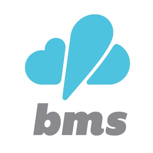 BMS Interactive logo