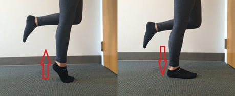 Single Leg Calf Raises are one of the popular exercises you can do from your desk