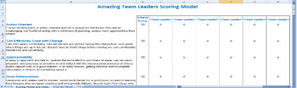 An example of the Amazing Team Leader Scoring Model